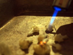 Bunsenbrænder | Blomkål | MadMedMartin.dk